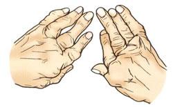 痛い 足 の 指 が 【足袋の履き方】足袋を履いて足が痛い時「ガマン」以外の対処法はあるのか?